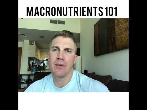 Macronutrients 101