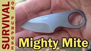Best Survival Kit Knife? - Schrade SCHCC1 - Money Clip Knife