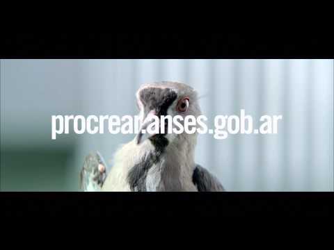 PRO.CRE.AR. Terraza II de YouTube · Duración:  31 segundos