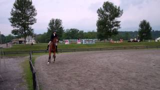 Prince of Hearts & Madison Mullins - Fourth Low Hunter - HITS Saugerties - August 1, 2013