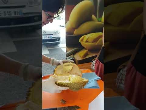 Dégustation de fruits exotiques de thailande