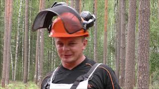 Змагання звалювальників лісу