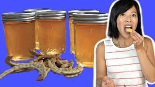 Poor Man's Honey - MESQUITE BEAN Jelly Recipe & Taste Test