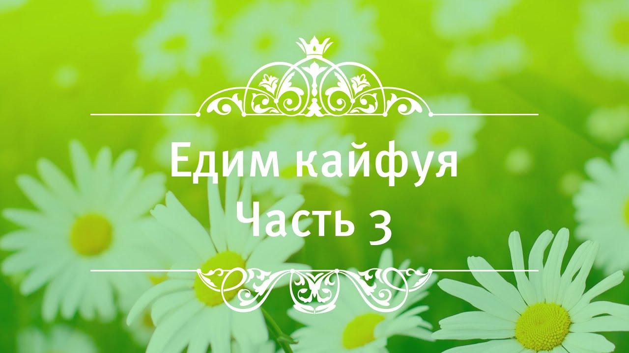 Екатерина Андреева - Едим кайфуя!!! Сессия 3.