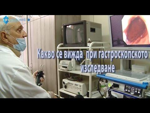 Профилактика Хеликобактер пилори