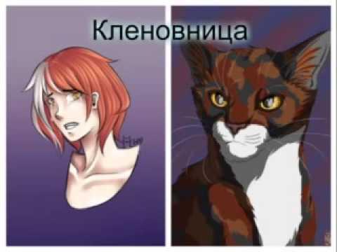 вашему коты воители в облике людей картинки утопает