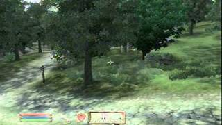 Oblivion Tutorial #2 - Best Sword and Armor To Get At level 1