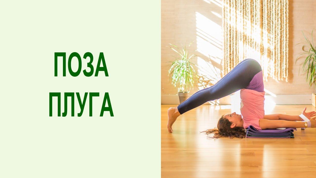 Перевернуты позы в йоге: поза плуга. Балансовые асаны йоги для здоровья позвоночника. Yogalife