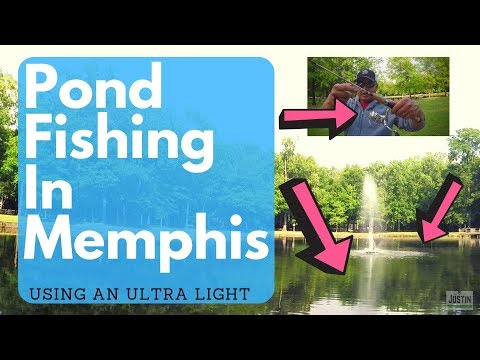 POND FISHING At Cameron Brown   Memphis, TN Germantown Using An Ultra Light Set Up