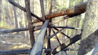 Colorado Bigfoot, Part 1