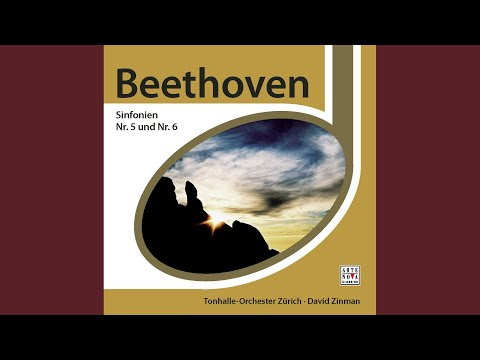 Symphony No. 5 in C Minor, Op. 67: I. Allegro con brio