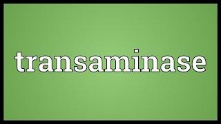 Transaminase Meaning