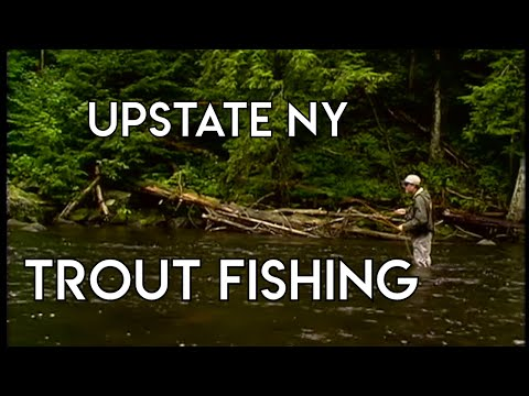 River Trout Fishing | Upstate New York