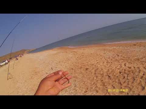 Рыбалка в Крыму на кефаль