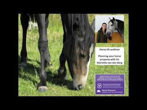 Horse SA: Planning your horse property with Dr Mariette van den Berg