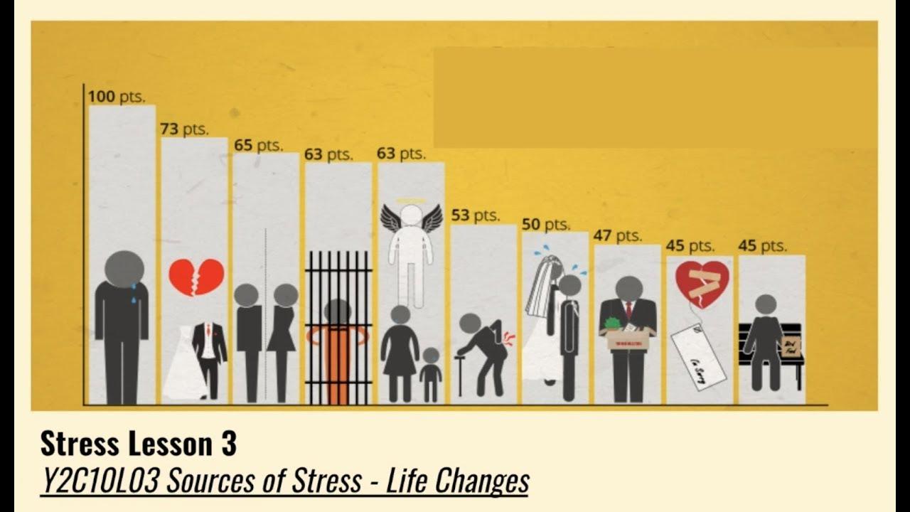 A-Level Psychology (AQA): Stress - Sources of Stress ...