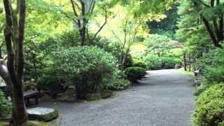 View Of Portland, Oregon Japanese Gardens From Area Of Wooden Bridge (41 Secs)