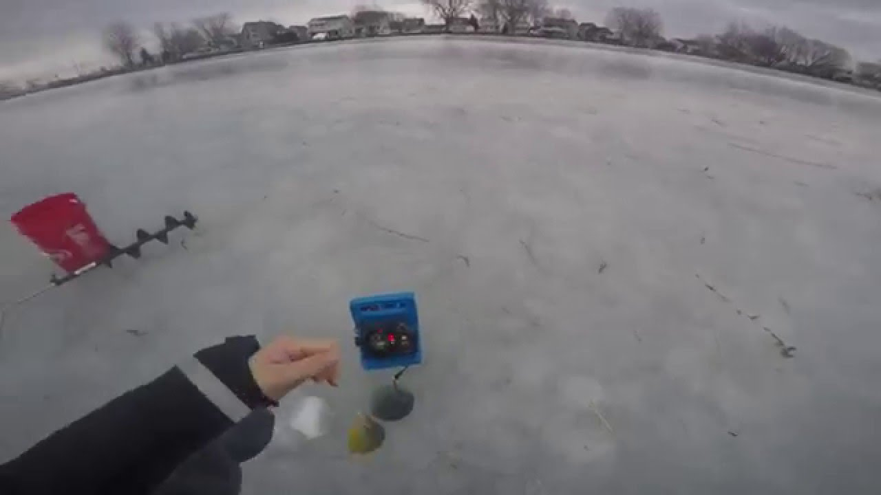 Ice fishing bluegills and sunfish on lake st clair youtube for Ice fishing lake st clair