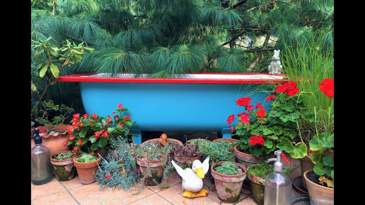 DIY Bathtub Pond in the garden - YouTube