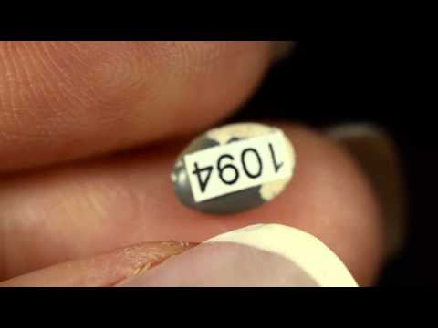1094 - Black Opal Australian natural solid 0.60 ct stunning rich colour block pattern