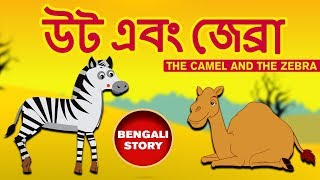 Bengali Stories for Kids - Uta Ebam Jebra   উট এবং জেব্রা   Bangla Cartoon   Rupkothar Golpo