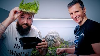AMATEUR AQUASCAPING WITH PETER ROSCOE - GOOD ENOUGH? screenshot 2