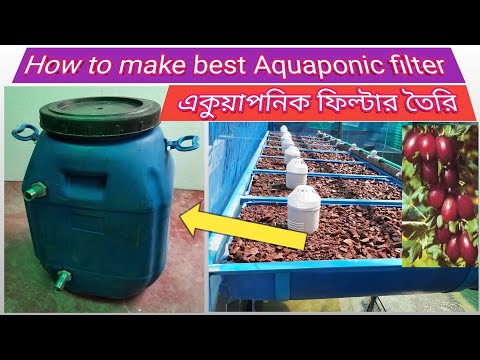 How to make a best Aquaponic filters | একুয়াপনিক ফিল্টার