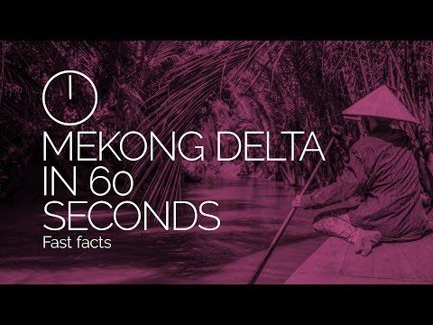 Mekong Delta, Vietnam in 60 Seconds