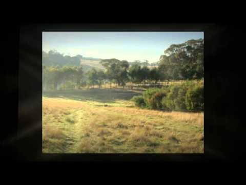 Organic farm for sale Ballarat Vic | Eco property