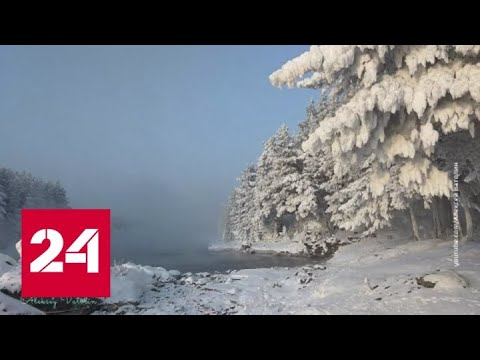 Под опекой тайги: как Россия сдерживает глобальное потепление? - Россия 24