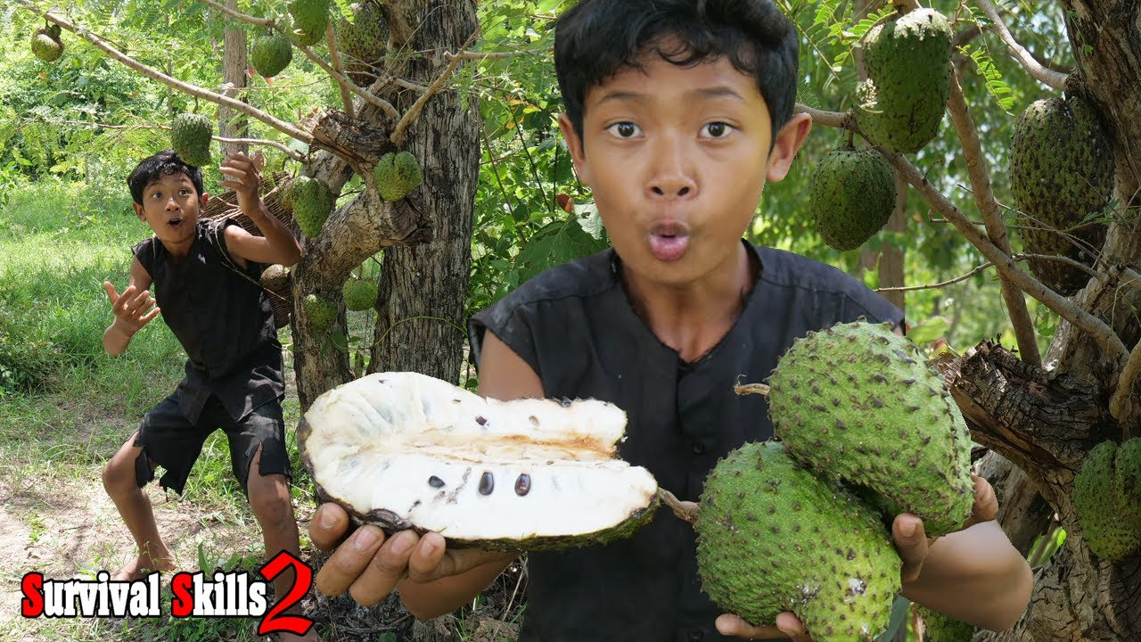 Survival Skills - Find food and eating soursop fruit delicious