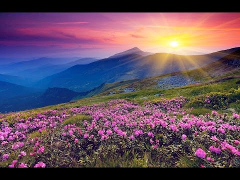 "Peaceful Music, Relaxing Music, Instrumental Music, ""Unfolding Splendor"" by Tim Janis"