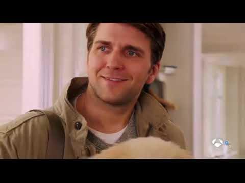 Ver Una ventana al amor Pelicula comedia Romantica Alemania 2016 en Español