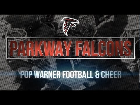 Falcons are Family