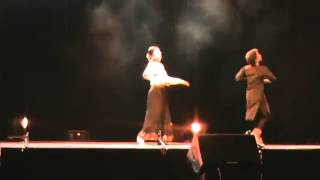 VIDHA LAL WORLD FAMOUS KATHAK DANCER
