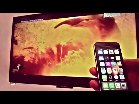 Screen Mirroring with iPhone Wirelessly - No Apple TV Needed