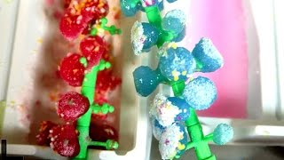 Edible Gummy Candy Tree Do It Yourself Kit ~ Incredible Science