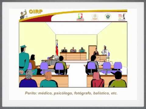 Simulacion de Audiencia en Juicio Oralиз YouTube · Длительность: 8 мин27 с