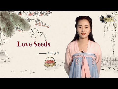 Mastering Chinese Poetry Ep. 2: Love Seeds 《紅豆》