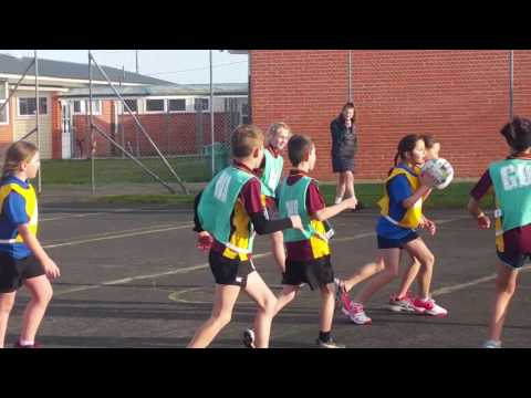 Western Primary Schools Year 5 and 6 Netball Tournament