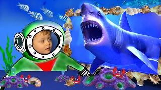 Детям про животных МЕГАЛОДОН Акула Монстр Морские Животные для Детей   Видео для детей Lion Boy