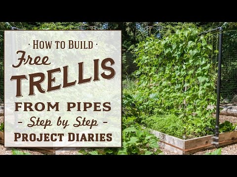 ★ How to: Make A Free Trellis from Pipes (A Complete Step by Step Guide)
