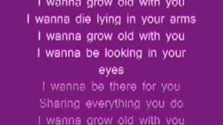 Dj Cammy i wanna Grow old with you (lyrics)
