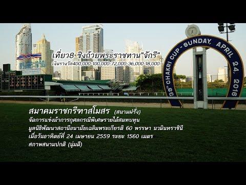 ม้าแข่งสนามฝรั่ง ชิงถ้วยพระราชทานจักรี ครั้งที่ 39 วันอาทิตย์ที่ 24 เมษายน 2559