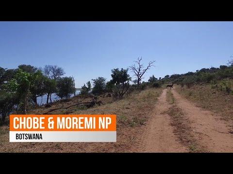 Chobe & Moremi National Park - Botswana