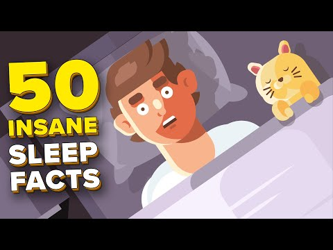 50 Insane Facts About Sleep You Didn't Know