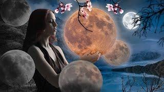 лунные дни