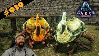 ARK Aberration deutsch | #030 | Öl aus eigener Produktion? Dung Beetle zähmen! | gameplay german