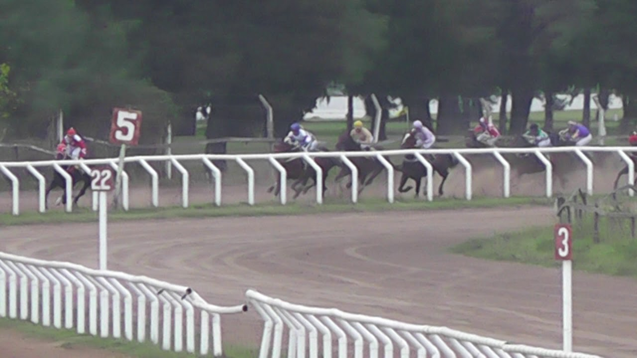 Download Jockey Club Santa Fe 9-06-19  9na  Carrera dst 1100Mts 1°REBOROB    2°MONEY BEACH