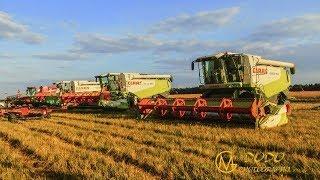 BIG Rapsernte 2018 - 4x Class Combine + 8x tractors Part 1